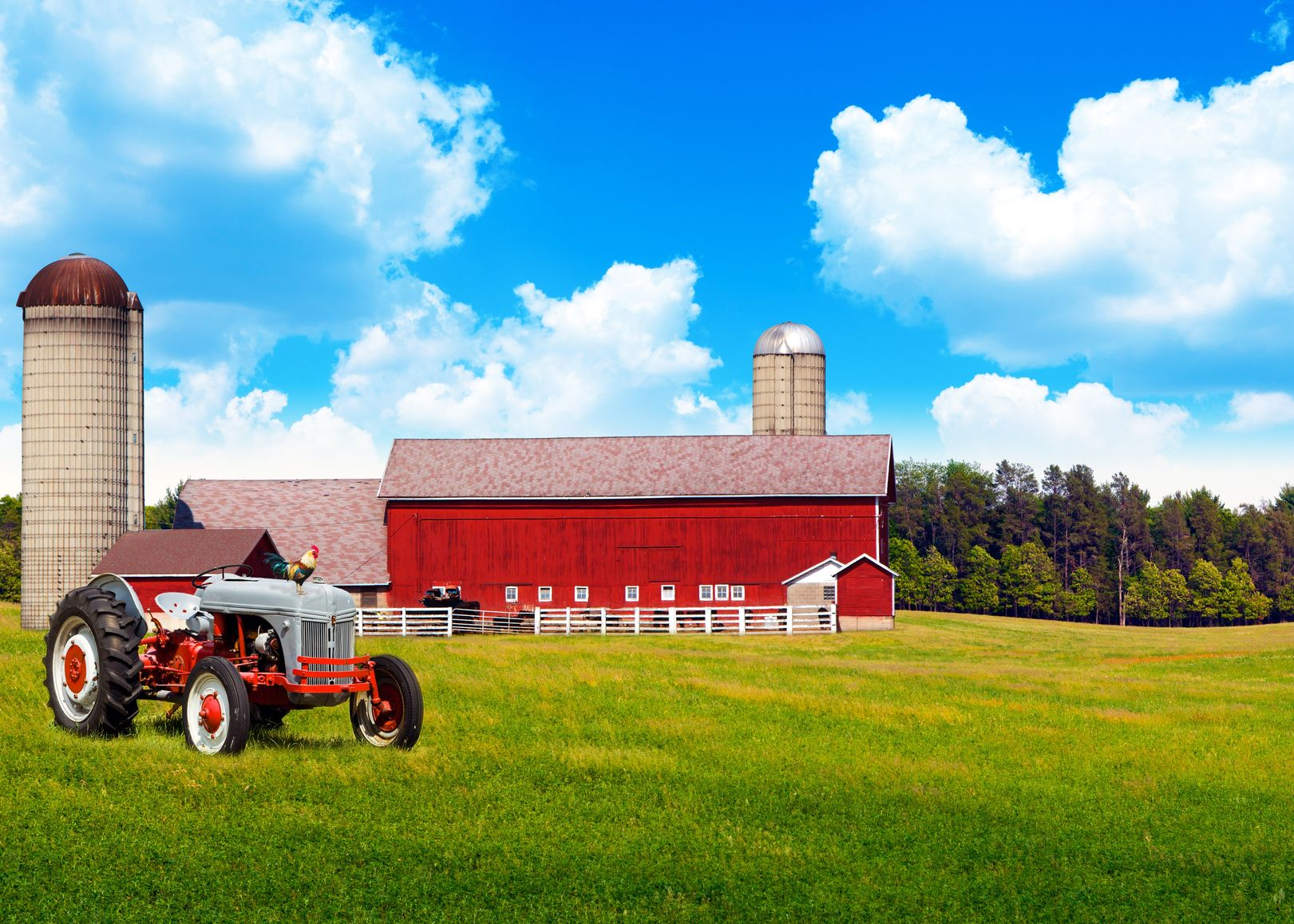 Sacramento Farm & Ranch Insurance